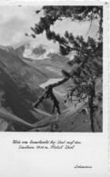 AK 0056  Blick Vom Ramolwald Bei Vent Auf Den Similaun - Foto Lohmann Um 1950 - Oetz