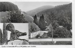 AK 0056  Sirnitz Bei Badenweiler - Gasthaus Zum Auerhahn / Verlag Metz Um 1953 - Hotels & Gaststätten