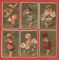 Série Complète 6 Chromos Lith. Testu & Massin, Fillettes & Fleurs - Chromos