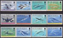 South Georgia 1994 Whales & Dolphins Definitives Set Of 12, MNH, SG 231/42 - Falkland Islands