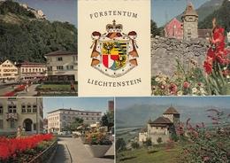 Liechtenstein - Vaduz 1961 - Liechtenstein