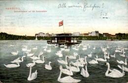 ALTE POSTKARTE HAMBURG SCHWANENHAUS AUF DER AUSSENALSTER Schwäne Schwan Swan Cygne Ansichtskarte Postcard Cpa AK - Mitte