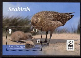 South Georgia 2012 Endangered Species, Seabirds MS, MNH, SG 560 - Falkland Islands