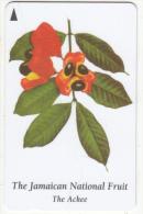 JAMAICA(GPT) - The Jamaican National Fruit, CN : 120JAMA, Used - Jamaica