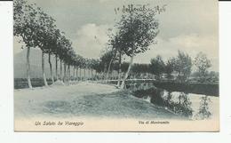 Y 126) VIAREGGIO -VIA DI MONTRAMITO - 1906 - Lucca