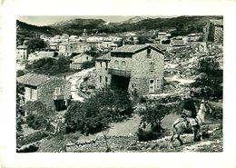 Cpsm QUENZA ( Corse ) Ane - Autres Communes
