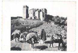 Cpsm ( Arles / Montmajour ) - En Provence - La Transhumance ( Moutons, Berger, D'après L'oeuvre De Léo Lelée ) - Arles