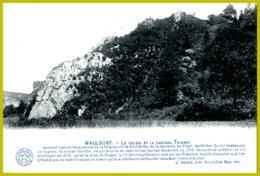 CPA-Waulsort-Le Colébi Et Le Château Thierry - Hastière