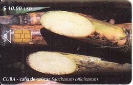 CUBA - Sugar Cane, Tirage 30000, 03/01, Used - Cuba