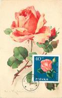 KLEIN CATHARINA (illustrateur) -  Fleurs Rose Orange,carte Maximum. - Klein, Catharina