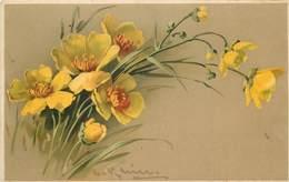 KLEIN CATHARINA (illustrateur) -  Fleurs  Boutons D'or. - Klein, Catharina