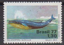 Brazil 1977 Blue Whale 1v ** Mnh (40976) - Brazilië