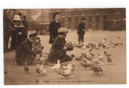 Liége. Les Pigeons De La Place Saint-Lambert - Liege