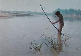 NAKED CAMAIURA BOY : BOW FISHING In KOLUENE RIVER / GARÇON NU : PÊCHE À L'ARC - BRASIL NATIVO - XINGU (aa069) - Brazil