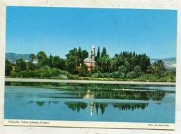 CYPRUS - AK 335394 Larnaca - Salt Lake - Tekke - Cyprus