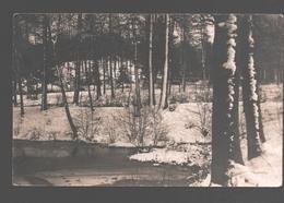 Houx - Etang Du Bois De Houx - Carte Photo Originale - 19 Févr. 1931 - Yvoir
