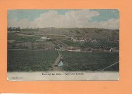 CPA  Abîmée  - Montreuil Aux Lions  - Vallée Des Maillions - Other Municipalities