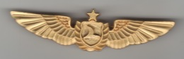 TURQUIE,TURKEI,TURKEY,TURKISH AIRLINES CREW BADGES - Crew Badges