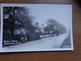 United Kingdom / Northern Woods, Flackwell Heath --> Unwritten - Buckinghamshire
