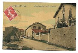 NEFFIES - Avenue De Fontès - Villa Ste Aimée - Sin Clasificación