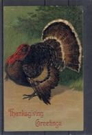 Relief - Gaufrée - Embossed - Prage - Dindon - TBE - Thanksgiving