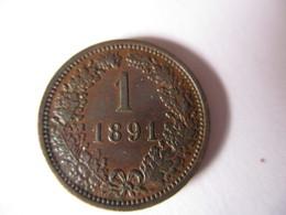 Autriche-Hongrie 1 Kreuzer 1891 - Austria