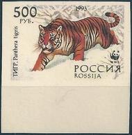 B3771 Russia Rossija Fauna Animal Tiger (500 Rubel) Organization Colour Proof - Abarten & Kuriositäten