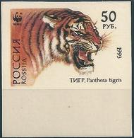 B3772 Russia Rossija Fauna Animal Tiger (50 Rubel) Organization Colour Proof - Errors & Oddities