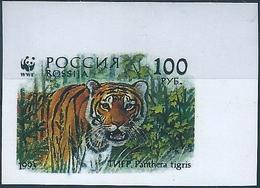 B13775 Russia Rossija Fauna Animal Tiger Organization (100 Rubel) Colour Proof - Felinos