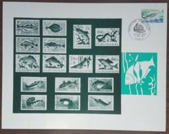 FDC 1972 - YT N°1693 - PROTECTION DE LA NATURE / SAUMON - PARIS - Sur Document - 1970-1979