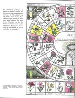 Jeu Instructif Des Fleurs (publicité Médicale Strecipen - Lab. Clin-Comar ) - Non Classés