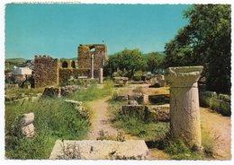 LIBAN/LEBANON - BYBLOS GENERAL VIEW OF THE GRECO-ROMAN RUINS - Libano