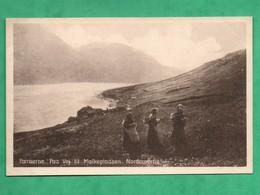 Danemark Faroe Islands Iles Feroe  Foeroerne Paa Vej Til Malkepladsen Norderoerne - Féroé (Iles)