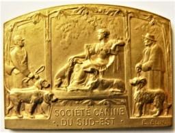 MÉDAILLE SOCIÉTÉ CANINE DU SUD EST EXPOSITION CANINE DIJON 1931 BRONZE DORÉ - Other