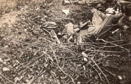 Bois De Belleau Wood Cadavre De Soldats Allemands WWI Ancienne Photo 1914-1918 - War, Military