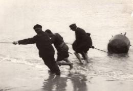 Marins Militaires Tirant Une Mine Sur La Plage WWI Ancienne Photo 1914-1918 - War, Military