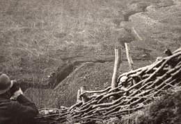 Poste D'Observation Vue Sur Les Tranchees WWI Ancienne Photo 1914-1918 - War, Military