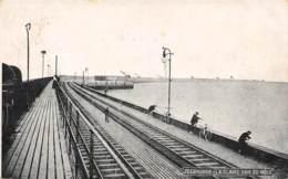 ZEEBRUGGE - La Claire Voie Du Môle - Zeebrugge