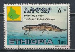 °°° LOT ETIOPIA ETHIOPIA - Y&T N°1126 - 1985 °°° - Ethiopia