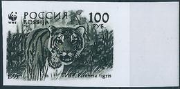 B3785 Russia Rossija Fauna Animal Tiger (100 Rubel) Organization Colour Proof - Errors & Oddities