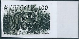 B3785 Russia Rossija Fauna Animal Tiger (100 Rubel) Organization Colour Proof - 1992-.... Federación
