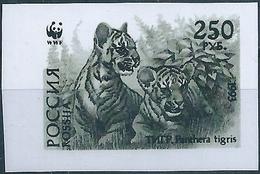 B3789 Russia Rossija Fauna Animal Tiger (250 Rubel) Organization Colour Proof - Abarten & Kuriositäten