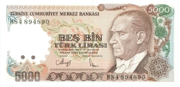 BILLET   TURQUIE BANKASI 5000 TURK LIRASI - Turquie