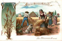 CHROMO  DANS LES GRANDES CULTURES  LE BLE  LA MOISSON  FRANCE - Trade Cards