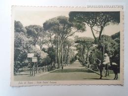 D161415   Italia  -   ROMA -  Lido Di Roma - Viale  Castel Fusano -  Animata Ca 1930's - Roma