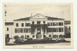 RODIGO - RICOVERO  - NV FP - Mantova
