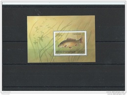 KIRGHIZSTAN 1994 - YT BF N° 5 NEUF SANS CHARNIERE ** (MNH) GOMME D'ORIGINE LUXE - Kirghizistan