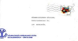 ISLANDE. N°703 De 1991 Sur Enveloppe Ayant Circulé. Lutte. - Lutte