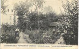 LINKEBEEK    Horticulture Et Pépinières De Linkebbek Vue D'une Partie Des Dahlias Cactus. - Landen