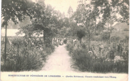 LINKEBEEK    Horticulture Et Pépinières De Linkebbek -chamin Conduisant Vers L ' étang. - Landen